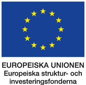 europeiska-strukturfonderna